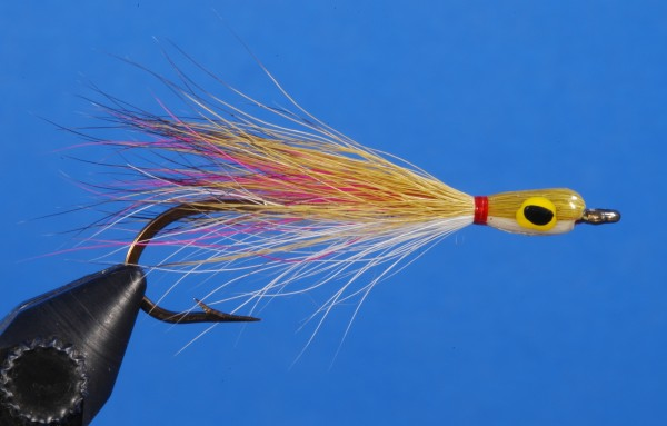 Toms-Thunder-Creek-Minnow