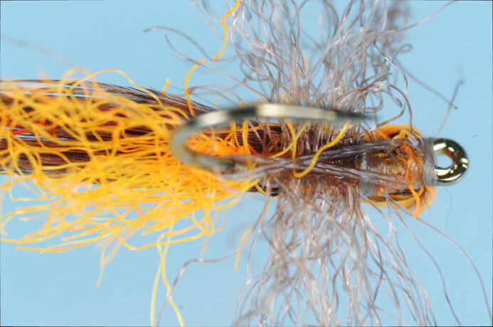 _PIC7603_Pumpkin-caddis-bottom.jpg